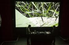 splice-festival-2017-saturday-performances - 17